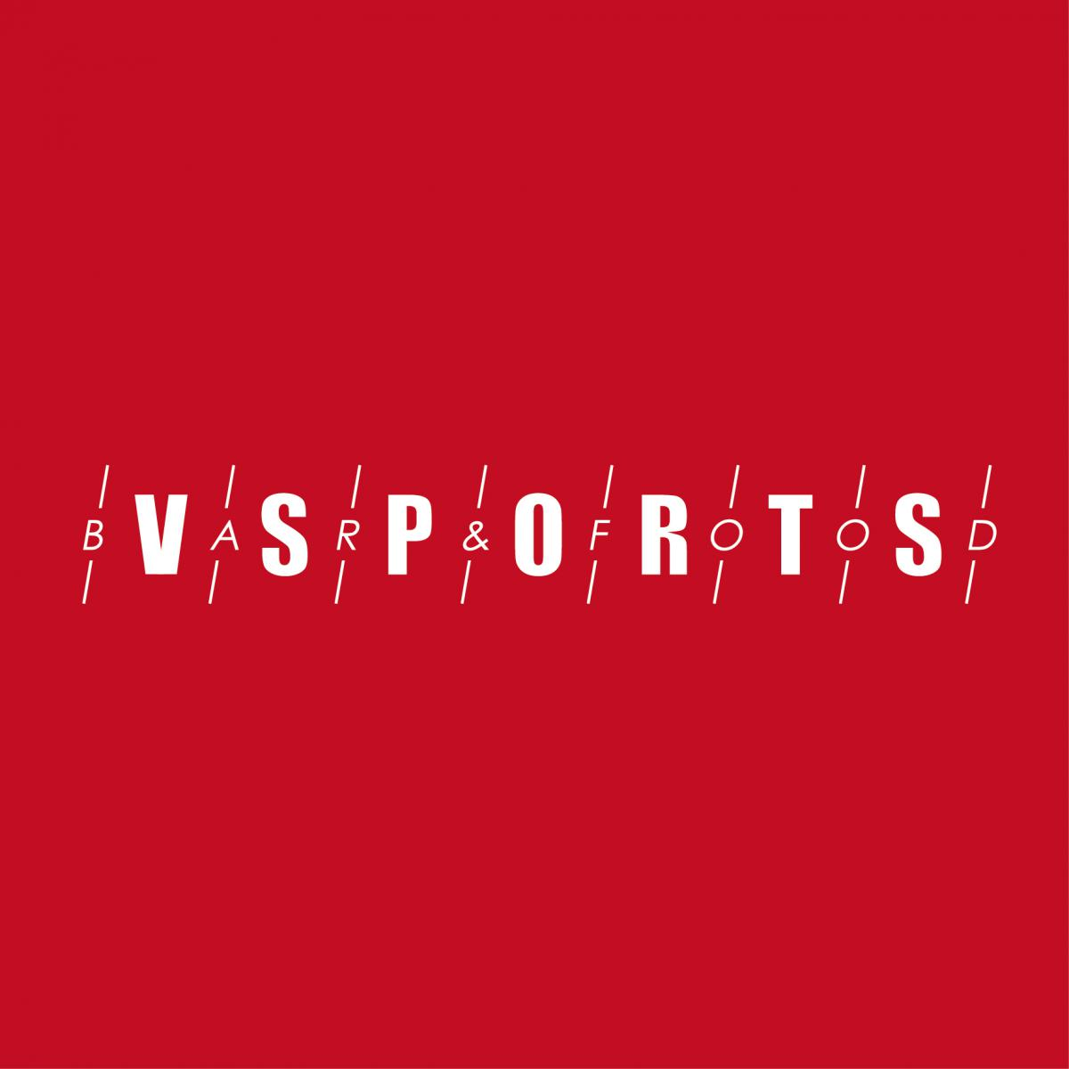 V Sports Bar and Food